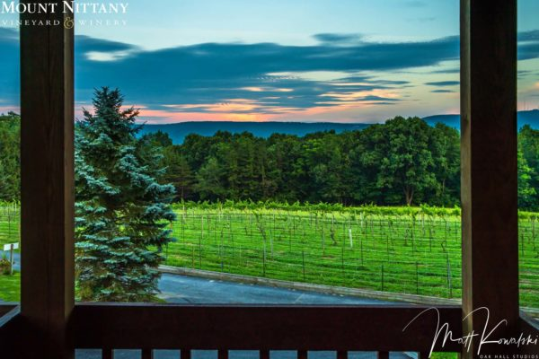 Lower Vineyard View from Balcony at Sunset