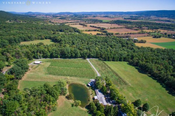 Mount Nittany Winery Aerial Daytime